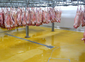 hygienic resin flooring for abattoirs resuthane tg69