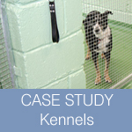 CASE STUDY: Seamless Hygienic Puppy Kennel Resin flooring