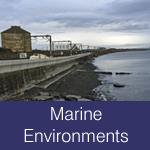 Marine Environments, ports, docks, shipping, sea wall